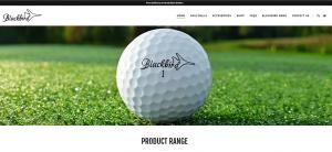 Website Design BlackBird Golf