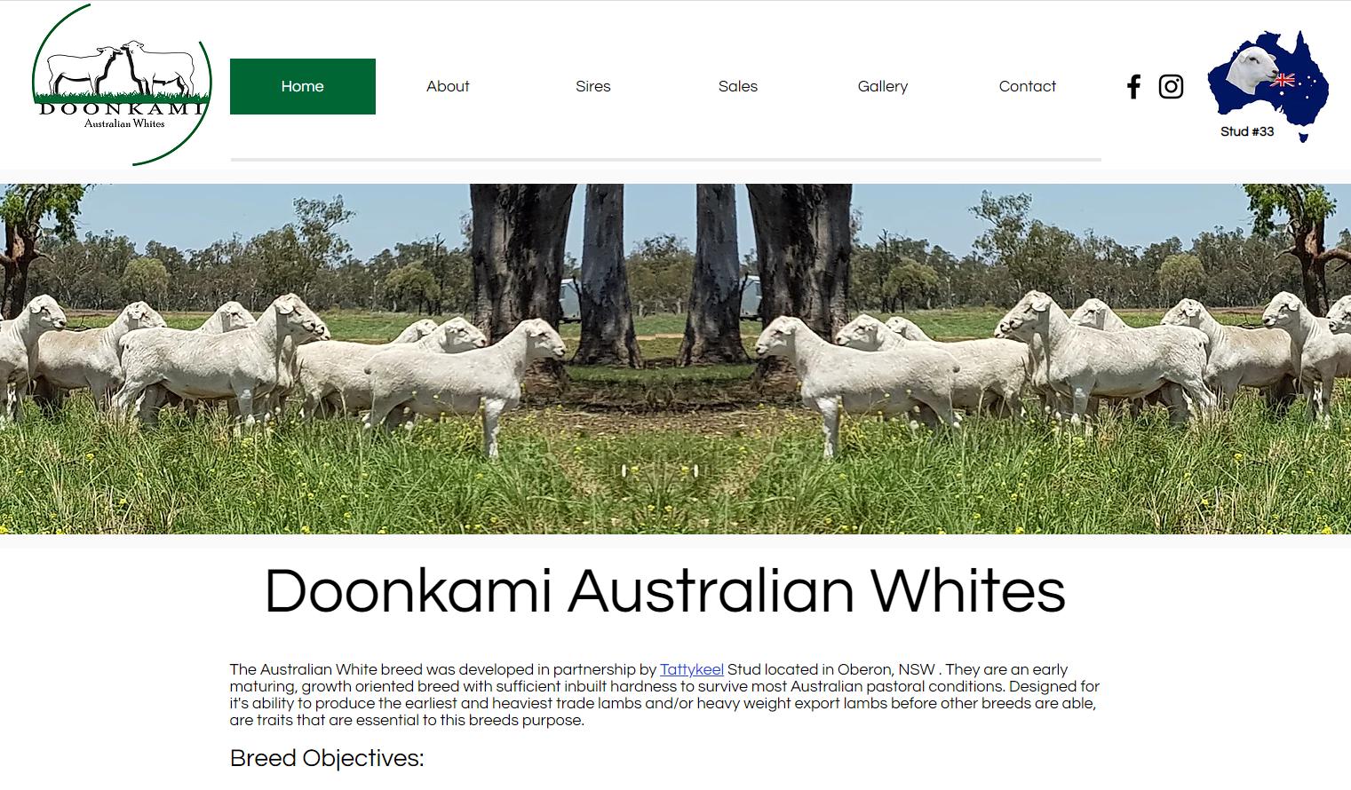 Website Design Doonkami